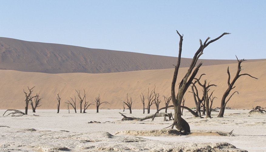 The Namib Desert in Namibia, Africa.