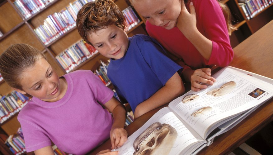 Library skills can extend reading and learning horizons.