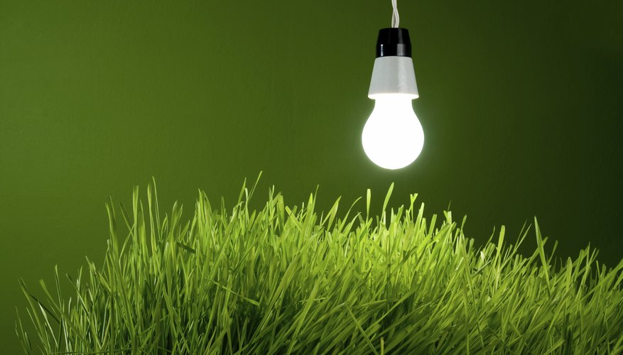 Artificial lights can be used for photosynthesis.