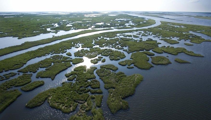 Coastal Plains Of Texas Natural Resources