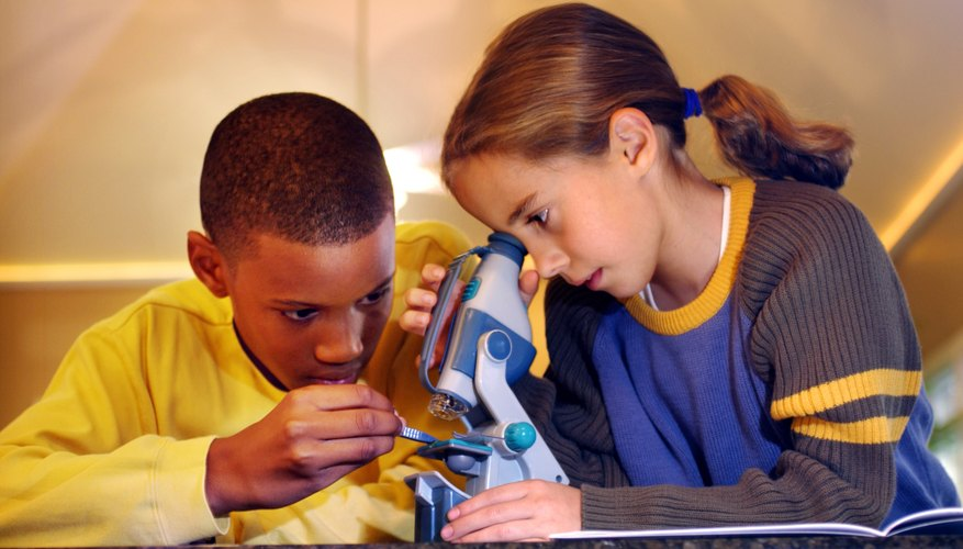 Two young children use a dissecting microscope in school