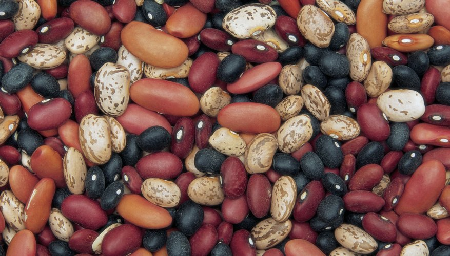 Beans make a healthy finger food for babies learning to eat.