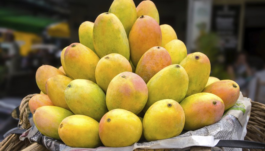 A basket filled with ripe mangoes.