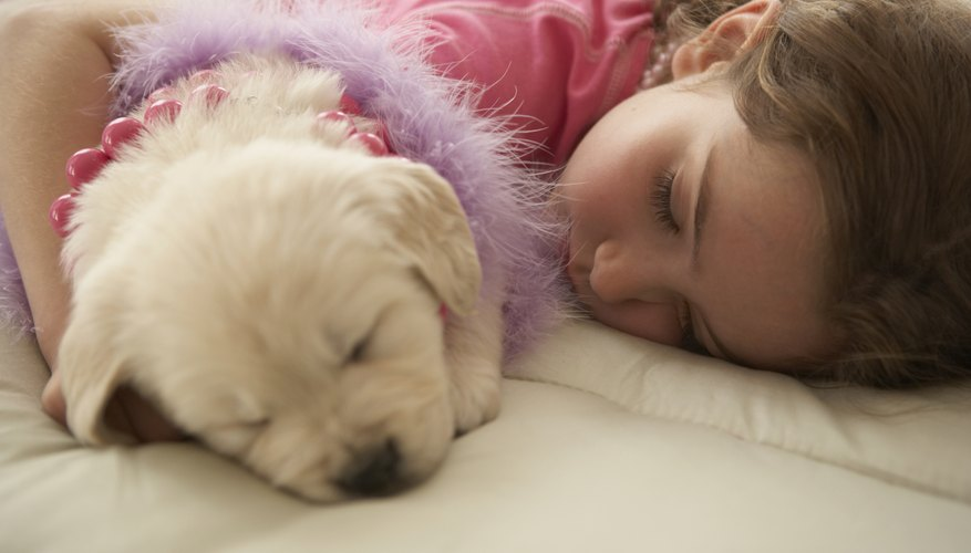 Exceptional Kids Sleeping In Parents Room Part - 11: Girl Sleeping With Dog