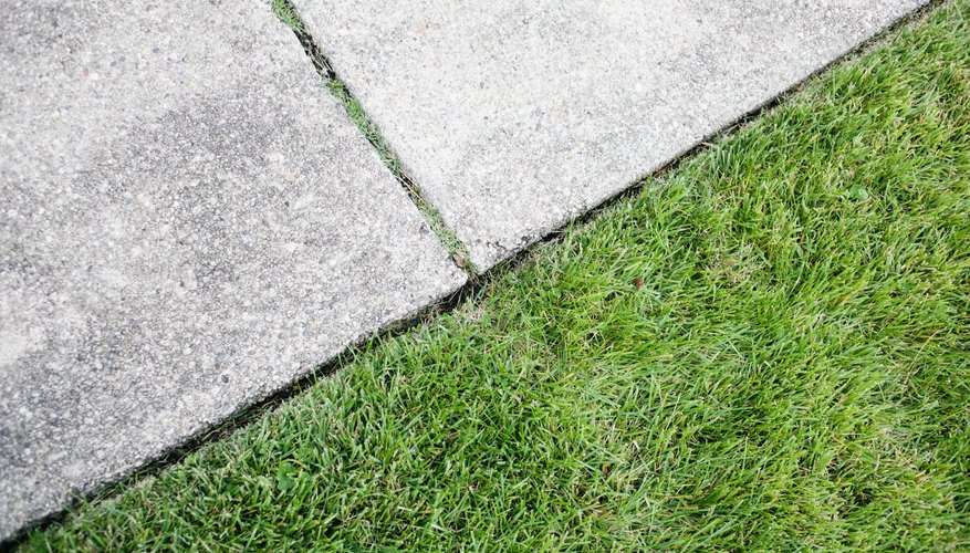 A wheel edger clips overhanging grass and trims thin areas of overhanging plants.