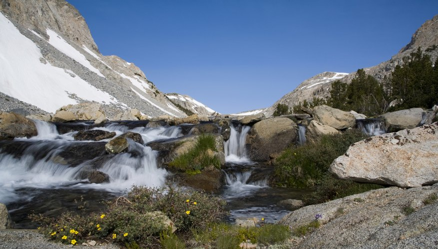 A small waterfall with flowers in the Sierra Nevada Mountains.