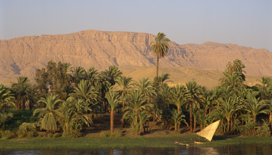 the importance of the river nile for the development of ancient egypt The egyptians were masters of trade in the ancient  trade in ancient egypt was important because it gave  map of ancient egypt (right (7)) the nile river is in.