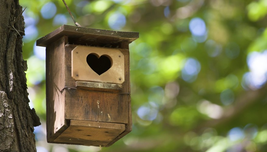 Small details will make your birdhouse extra special.