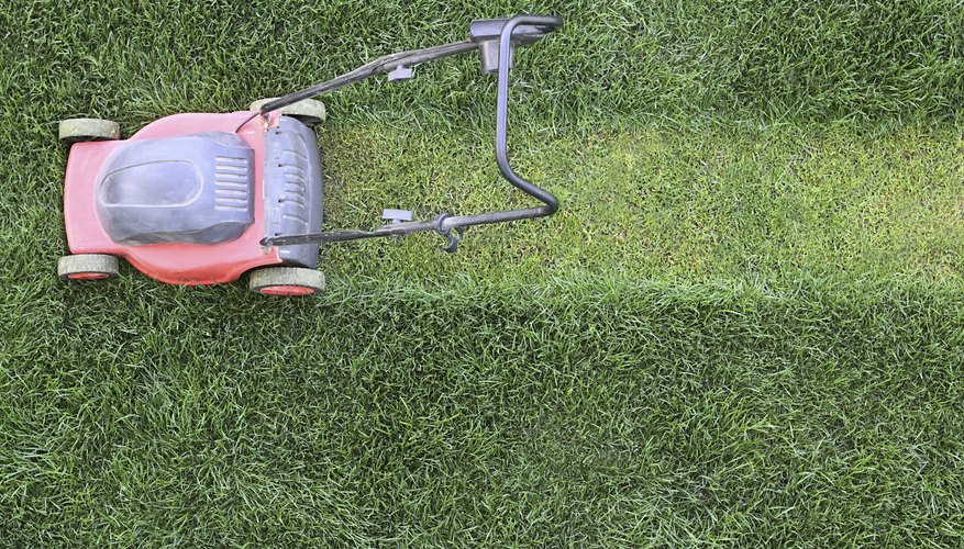 A walk-behind mower on cut grass.