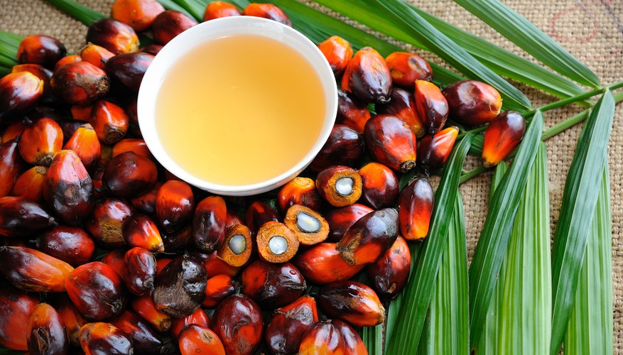 Critics say palm oil comes at an intolerable cost.