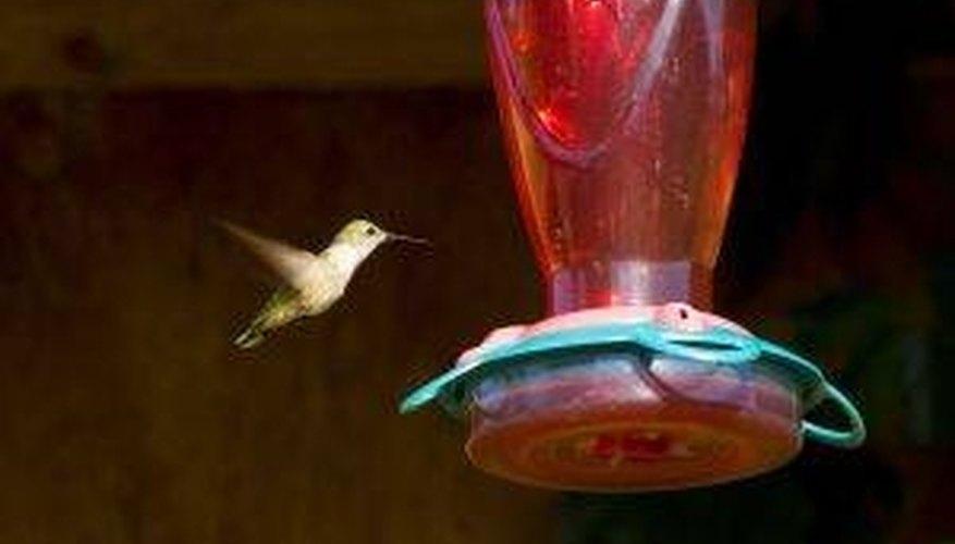 Cómo hacer colibrí alimentos para los alimentadores | Sciencing