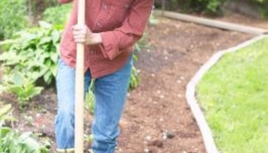 A smaller vegetable plot is just right for the novice gardener.