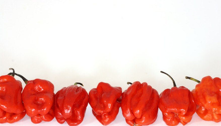 Red peppers are a popular ingredient in Italian cookery.