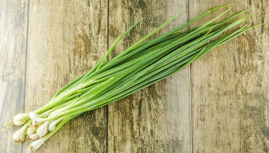 Bunching onions can grow in 6-inch-deep pots.