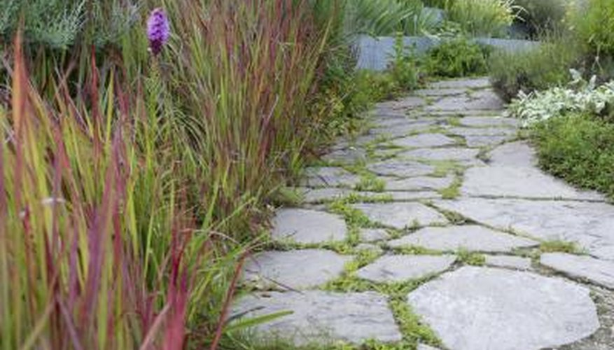 Stone path leads through a small garden bed
