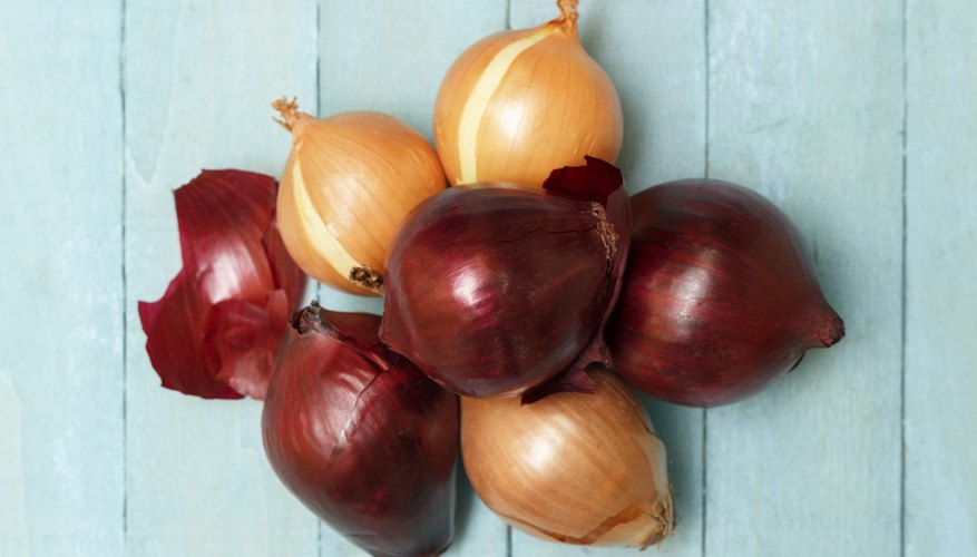 Round or globe-shaped onion bulbs usually have a pungent flavor.