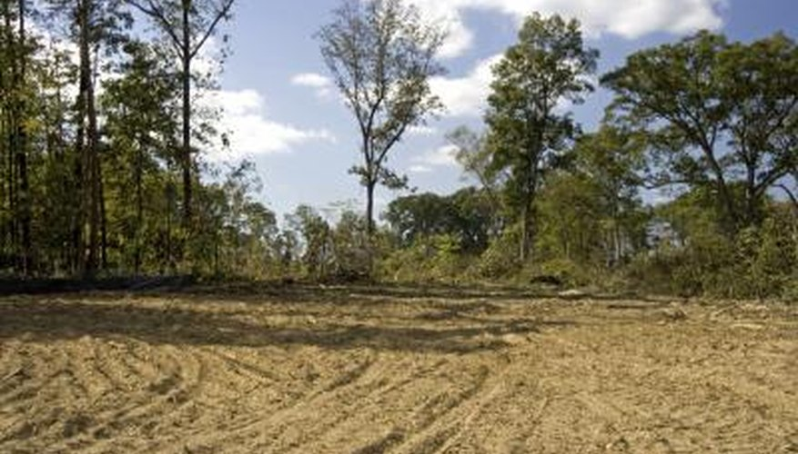human population increase causes land to be cleared.