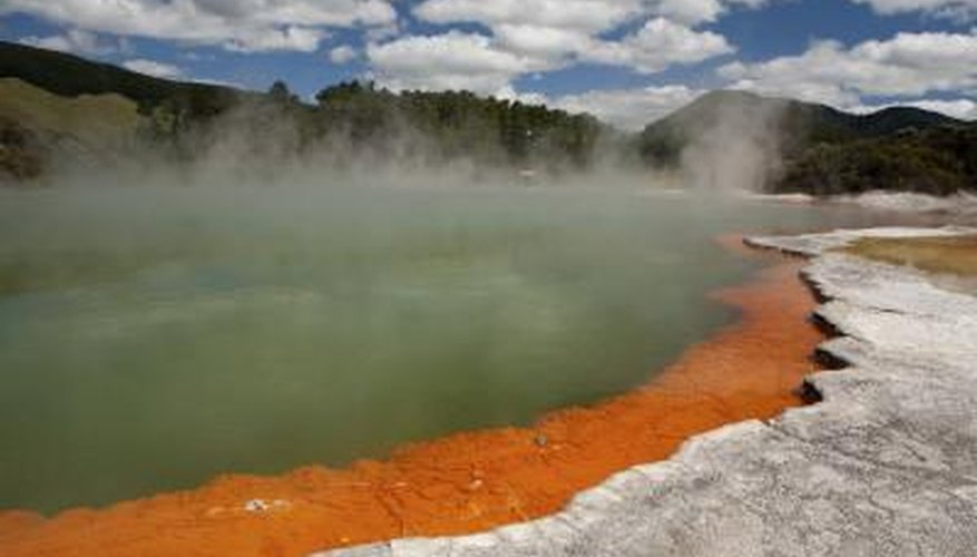 The hot water in a hot spring limits the biotic factors to bacteria that can survive the high temperatures.