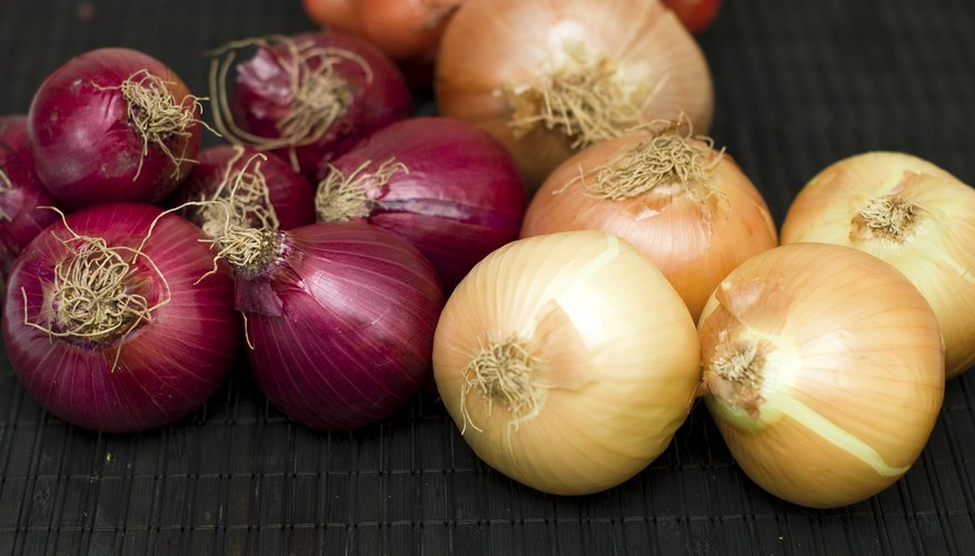 List of Onion Varieties