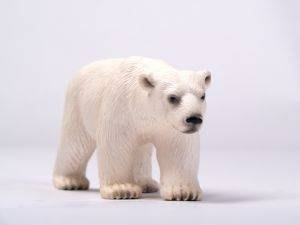 How Do Polar Bears Camouflage?