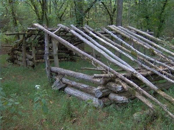 How to Build a Wood Lean-To Shelter (with Pictures)
