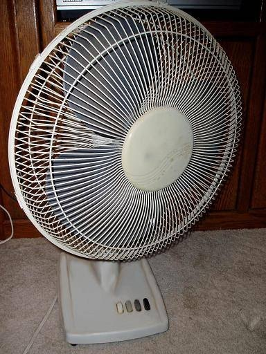 A standard oscillating fan