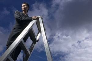 Find out about the company ladder