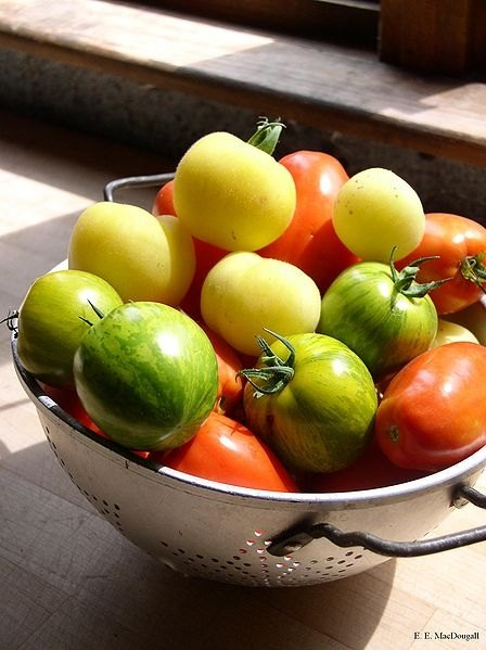 fruits and vegetables marketing plan Fruit 'n fit business plan  marketing plan 18 5 operations plan 23  fruits available during that particular season will be harvested a portion would be used .
