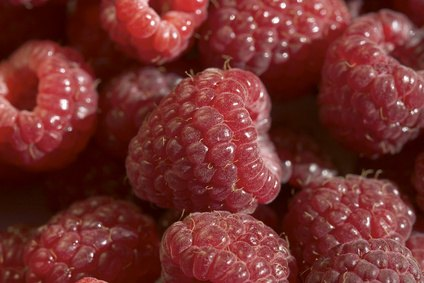 Red raspberry seeds are rich source of essential fatty acids and antioxidants.