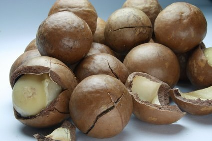 Macadamia nuts provide vitamins, minerals and antioxidant fatty acids.