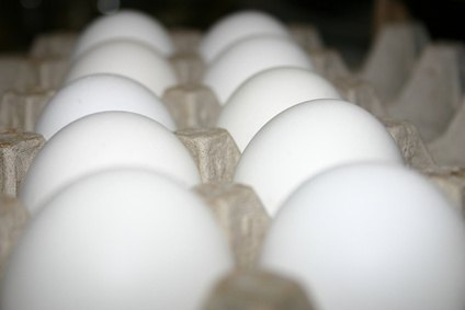 Any equipment for the production of eggs is exempt from sales tax in Ohio.
