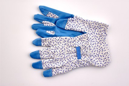Garden gloves keep the hands P-free while gardening.