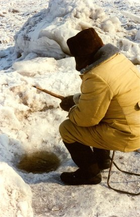 Ice Fishing With a Jigging Stick