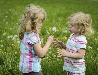 Two girls blow on a dandelion in a field.