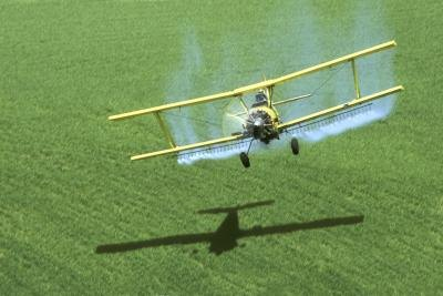 DDT was often delivered by crop dusters
