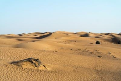 Natural Resources Found In The Sahara Desert