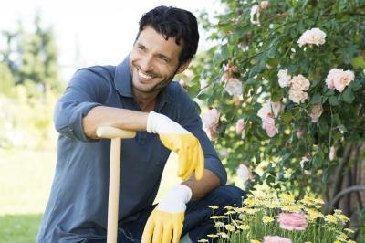 Landscapers plan and plant a combination of flowers and plants.