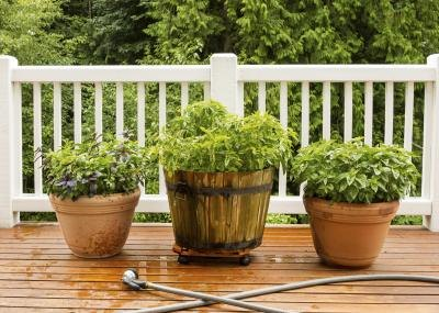 Wash the deck with plain water after cleaning it.