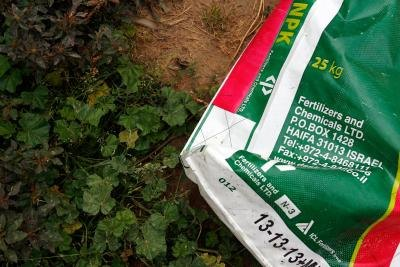 The three numbers on a bag of fertilizer represent the percentage of nitrogen, phosphorous and potassium, in that order.