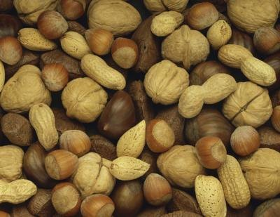 A variety of mixed nuts.