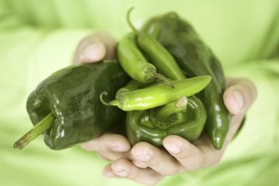 Person holding an assortment of green chilies and peppers