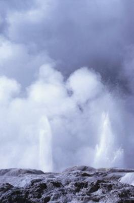 A hot springs geyser at Yellowstone Park.