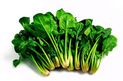 Spinach grows in many climates and hosts a wide range of pest species.