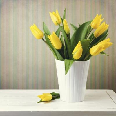 "Yellow tulips are generally associated with ""cheerfulness""."