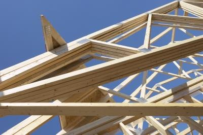 There are many types of beams with many uses.