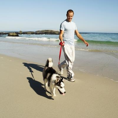 A man walks his dog on the beach.