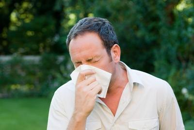 The most common allergens are pollen, dust, dander and mold