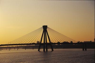 Cable-stayed bridges have a striking appearance.
