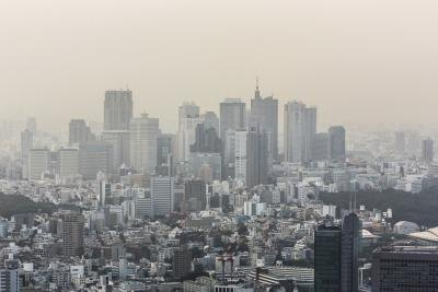 Smog is a serious threat to ecosystems.