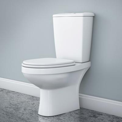 How To Clean Stains On Plastic Toilet Seats With Pictures